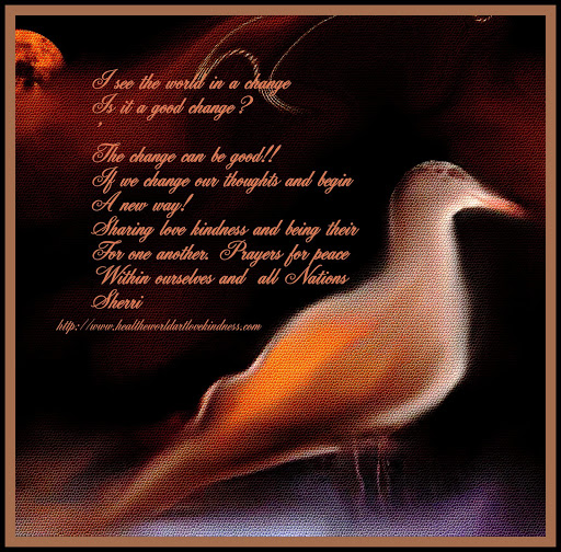 POEM BY SHERRI, AND BEAUTIFUL PICTURE OF A SEAGULL BY SHERRI