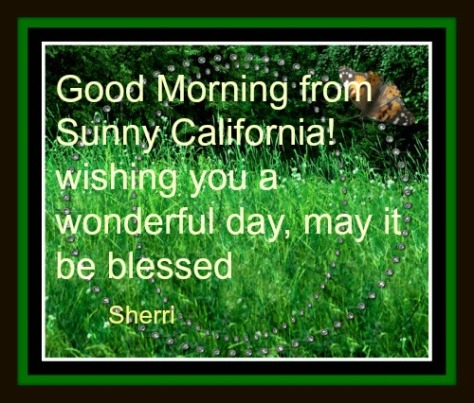 good morning from sunny cal