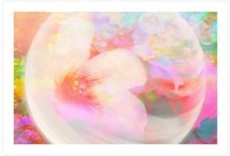 society 6 picture