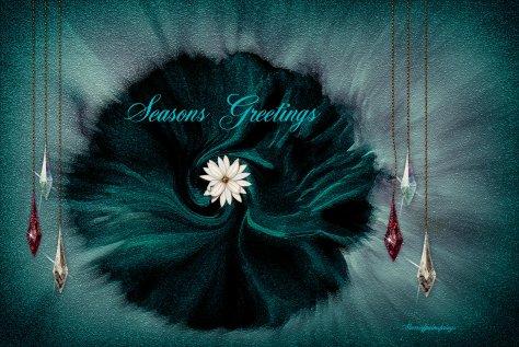 Seasons Greetings_8272894_o-003_edited-006 (2)