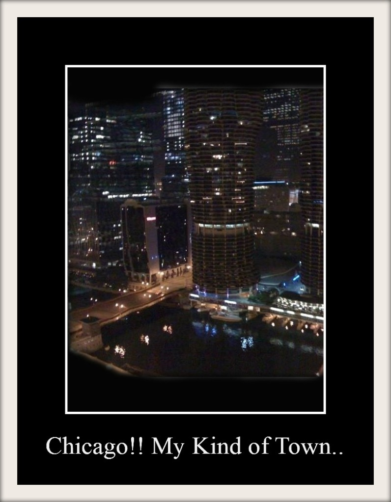 Chicago My Kind Of Town by Sherri