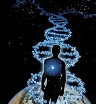 DNA senses