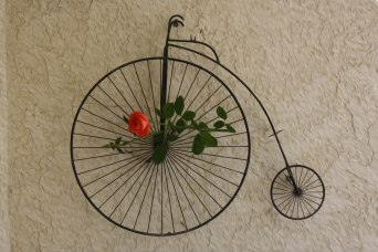 a-rose-for-you-by-sherri-nicholas-jpg.jpg