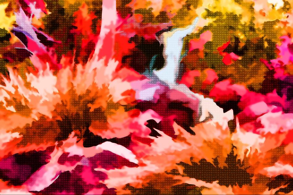 A whew..Crazy Reds edited-1