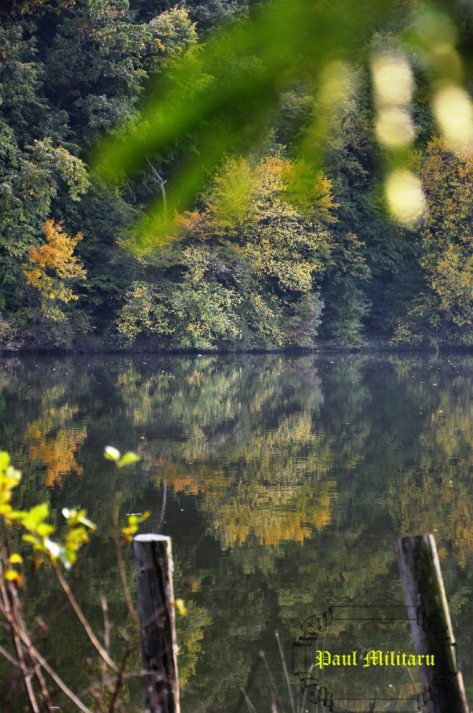 autumn book - beyond the lake