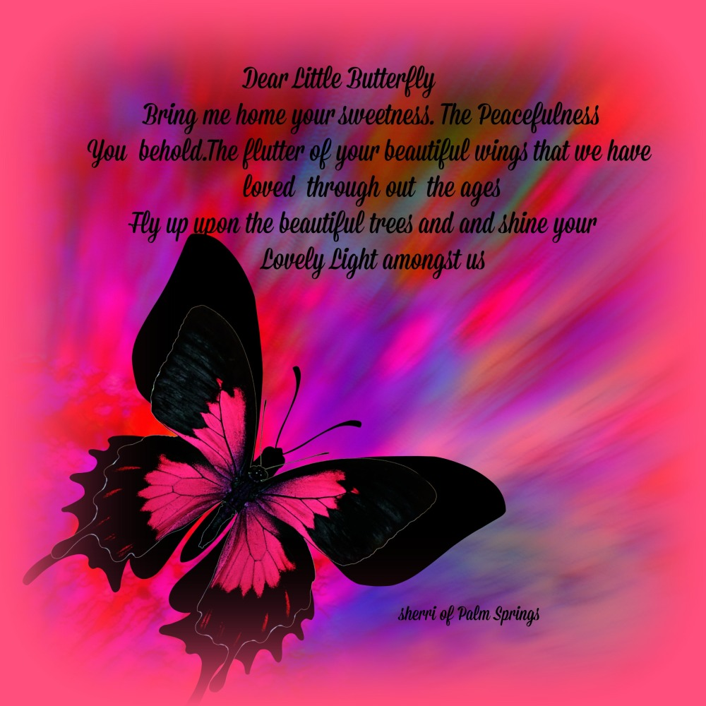 little butterfly Brind me Home