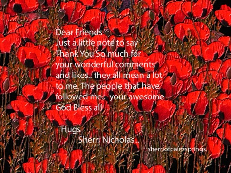 a Little Poppies Saying Thank You